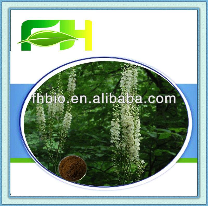 Best Quality Natural Black Cohosh Root Powder