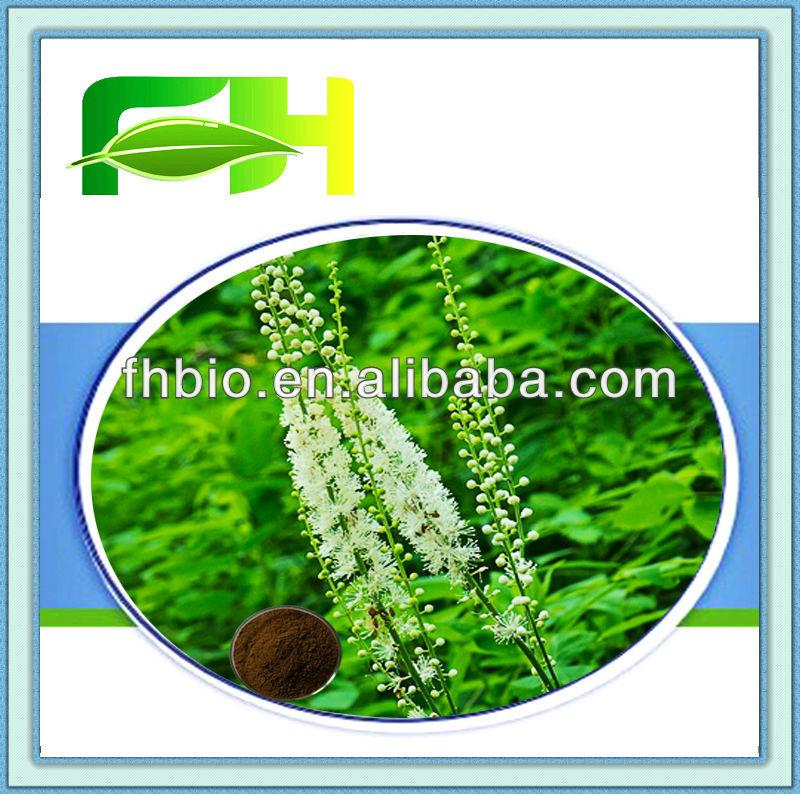 Best Quality Natural Dried Black Cohosh Powder