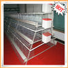 2013 new design hot-sale automatic battery chicken layer cage