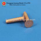 flat head small phosphor copper solid rivet