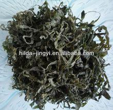 New type of machine dried sea kelp cut salted