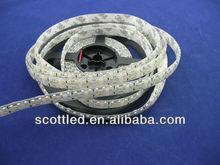 waterproof 3528 240leds/m led flexible strip,DC12V input,5m a roll