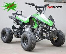 Off road 110cc ATV Quad CE