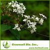 2014 Chastetree berry/Vitex Extract