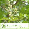 2014 Vitex Extract - Herbal Extract