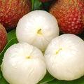 العذبة الصينية lichee tp الفلبين تصدير الفاكهة الطازجة soursop