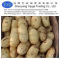 pommes de terre fraîches prix 2014
