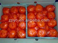 Fresh Chinese Ponkan