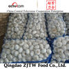HOT Sell 20kg mesh bag Chinese pure white bulb garlic seed