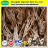 Natural plant 1% ligustilide dong quai root extract