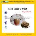Gmp fabbrica di approvvigionamento naturale cocos poria estratto in polvere con il 10%- 40% polisaccaride