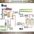 jugo concentrado de pera de la línea de producción
