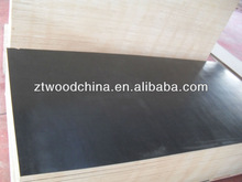 CHEAP concrete plywood /black film faced plywood for Africa