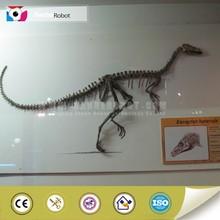 Simulation dinosaur museum equipment