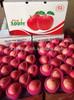 2014 Sweet red delicious yantai fuji apple
