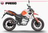 NEW and latest model 250cc dirtbike/ sports motorcycle TEKKEN