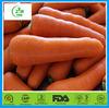 2014 bulk fresh carrot