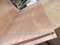 Bintangor okume chapa de madera de madera contrachapada, melamina frente de madera contrachapada, muebles de madera contrachapada de grado