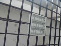 grid fluorescent ceiling light fixture 3x18w