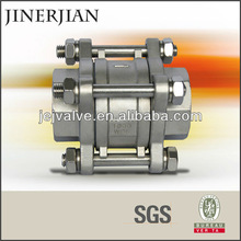 Hot! Stainless Steel Ball Check Valve of JEJ