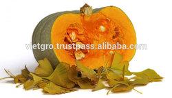 Viet Nam High Quality F1 Hybrid Pumpkin Seeds VGP05