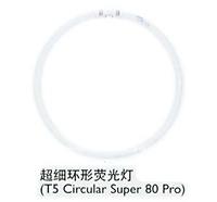 philips T5 circular Fluorescent lamps