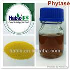 Animal Feed Additive, Phytase