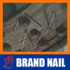 Nail/Wooden Nail/Nails Carpenter
