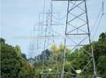 angular 220kv línea de transmisión eléctrica de acero de la torre