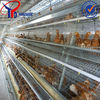 Design Layer Chicken Battery Cage/chicken laying cage/chicken egg layer cages