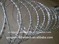 Concertina rasoio croce di filo spinato tipo( fabbrica)