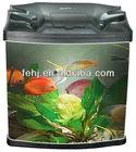 unique mini glass fish tank