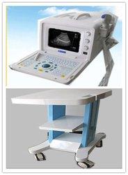 Full Digital Portable price ultrasound pregnancy test (DW3101A)