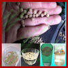 High quality floating fish feed pellet machine / floating fish feed making machine