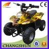 2012 Hot Selling Style 36V Electric ATV