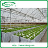 Advanced hydroponics system for greenhouse
