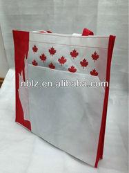 2014 Handle customized non woven shopping bag/Non woven PP bag