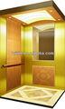 Luxo passageiro elevador( fs- cj- 213)