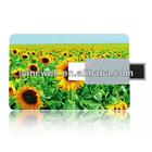 Low Price 2GB Business Card USB