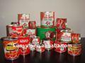 28-30% lata pasta de tomate con buena calidad