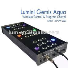 where amazing Lumini cheap price 120W led ceilings marine life