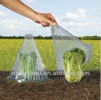 Plastic Garden Cloche