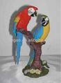 resina pappagallo parlante