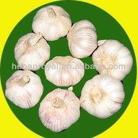 JInxiang China Fesh White Garlic