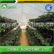 passive solar tunnel greenhouse