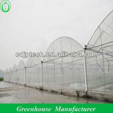 200 Micro UV Film Steel Frame Greenhouse
