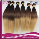 Natural Straight100% Brazilian Human Hair Made New Style Ombre Hair Extension Accept Paypal Two Tone Color