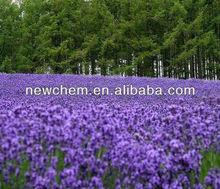 Natural Pure Lavender Oil