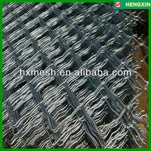 Grid Wire Mesh/Grid Netting