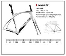 carbon road bike frame